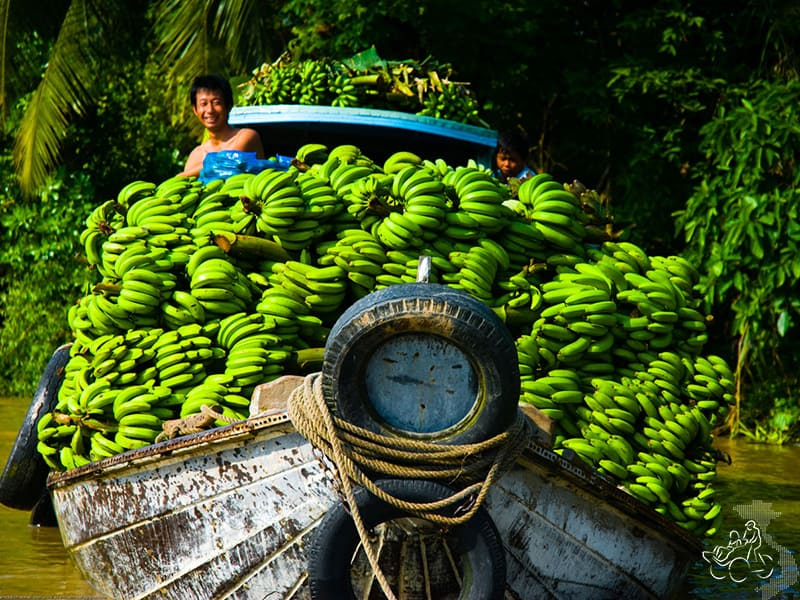 Bananas on a boat at Phong Dien, in Vietnam's Mekong Delta - Mekong delta tour from saigon